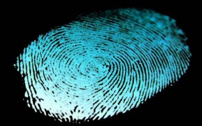 Prueba digital – Investigación Tecnológica